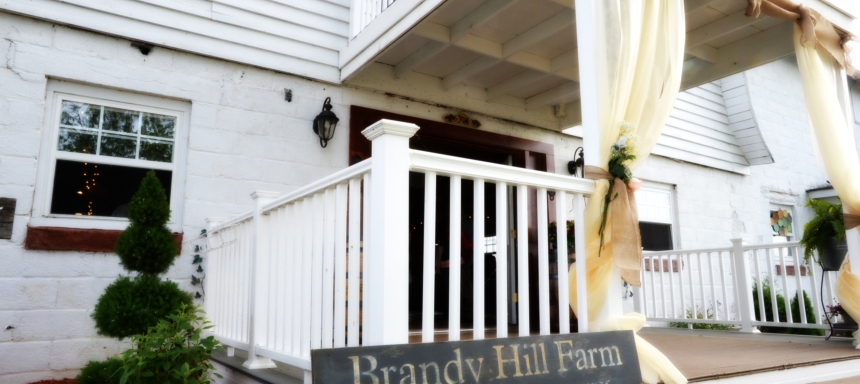 Brandy Hill Farm Ribbon Cutting and Open House